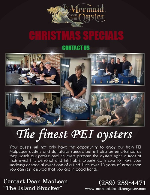 The Mermaid and the Oyster - Christmas Specials